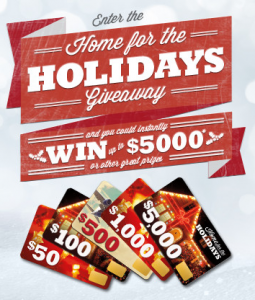 USA Gold Home For The Holidays Giveaway