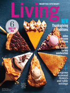 Free One Year Subscription To Martha Stewart Living Magazine