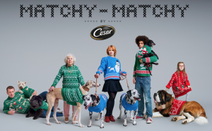 CESAR Matchy Matchy Holiday Sweater Sweepstakes