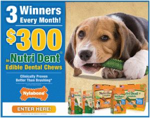 Nylabone $300 Nutri Dent Contest