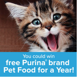 The Purina Fabulously Furry Giveaway