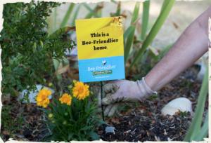 Free Cascading Farms Organic, Native Wildflower Seeds