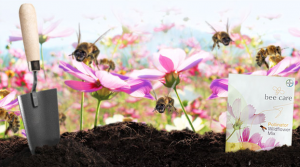 Free Pollinator Wildflower Seed Mix