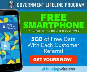 Bluejay Wireless - Free Cellphone + Free Minutes + Free Text