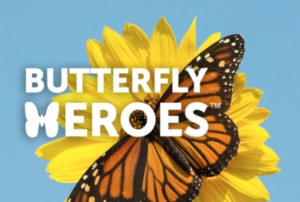 Deals on Butterfly Garden Seed Starter Pack