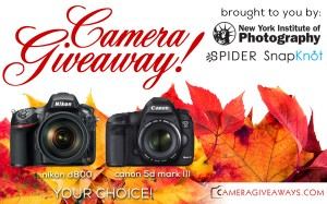 Nikon D800 or Canon 5D Mark III Camera Giveaway