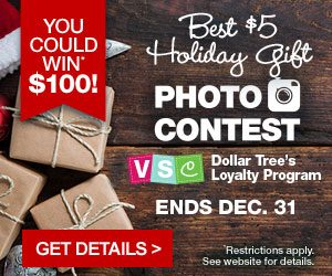 Dollar Tree Value Seekers Club Best $5 Holiday Gift Photo Contest
