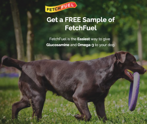 Free Sample Of FetchFuel For Dogs