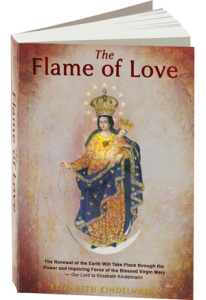 Free Flame Of Love Diary