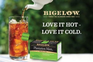 Free Sample Of Bigelow Plantation Mint Tea