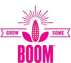 Free Sample Of Angie's Boomchickapop Popcorn Seeds