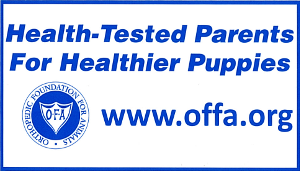 Free Health-Tested Parents For Healthier Puppies Sticker