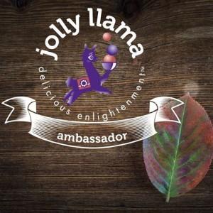 Jolly Llama Ambassador Program