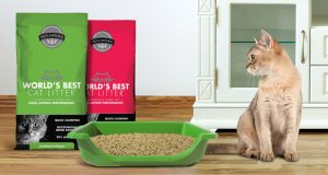 Possible Free World's Best Cat Litter