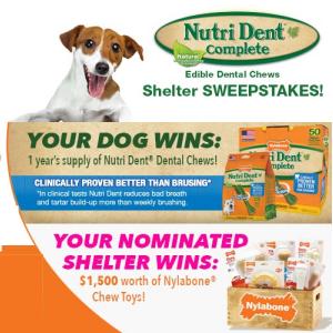 Nutri Dent/Nylabone Shelter Sweepstakes