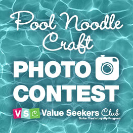 Dollar Tree Value Seekers Club Pool Noodle Craft Contest