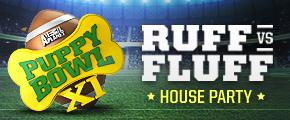 Puppy Bowl Ruff vs. Fluff House Party