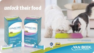 Free Sample Of Syncope Probiotic For Pets